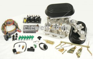 Individual throttle body kit - single plug - TEC-gt